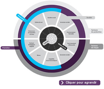 Modèle conceptuel de promotion de la santé mentale et de prévention des troubles mentaux